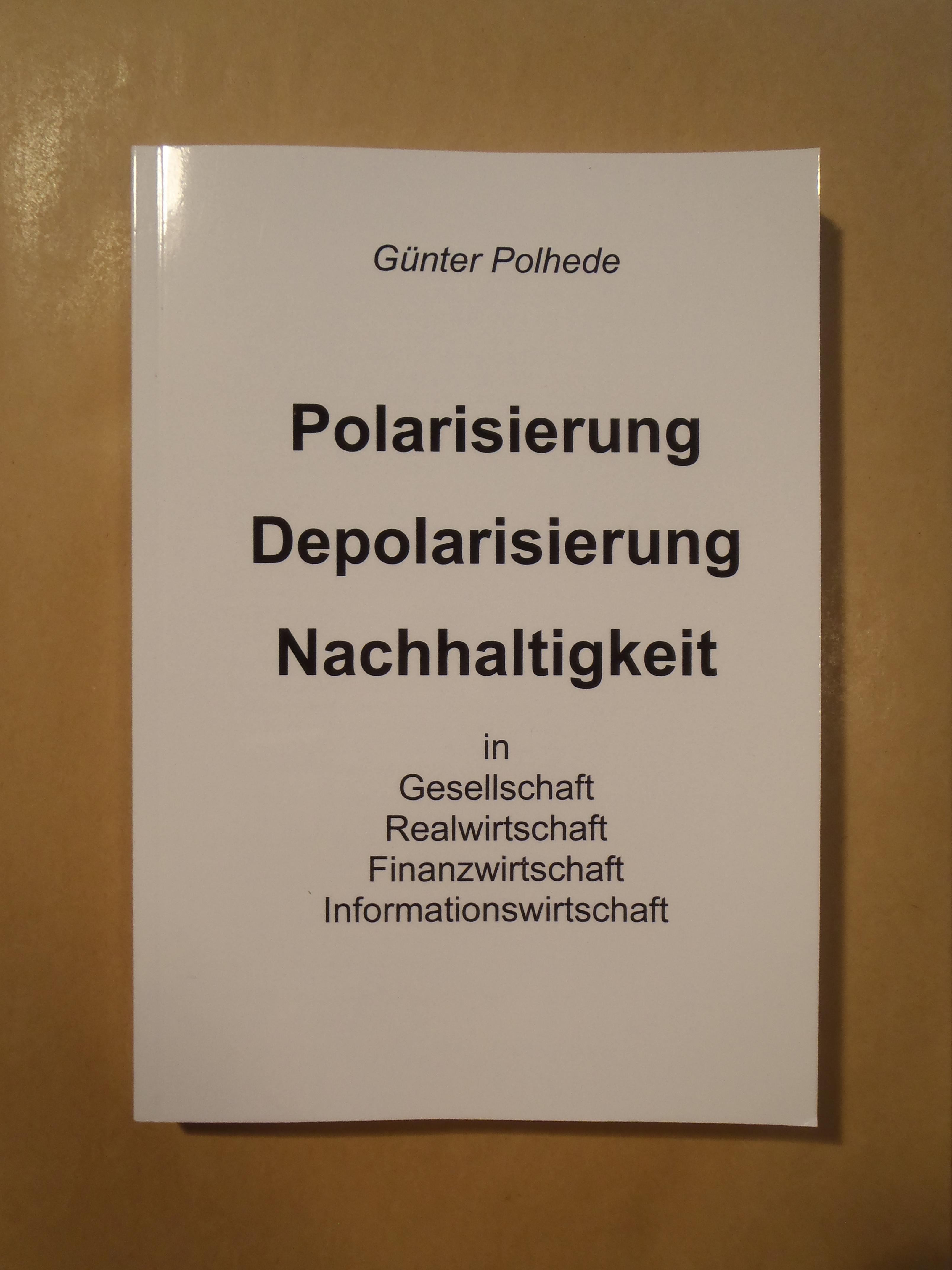 Cover zu Polarisierung - Depolarisierung - Nachhaltigkeit in Gesellschaft, Realwirtschaft, Finanzwirtschaft, Informationswirtschaft