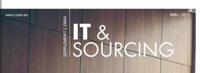 Cover zu IT-Einkauf als Unternehmens-Motor