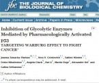 Inhibition of glycolytic enzymes mediated by pharmacologically activated p53: targeting Warburg effect to fight cancer