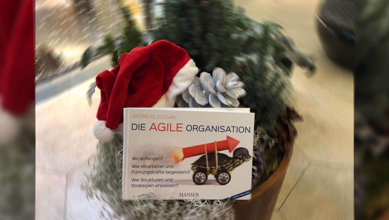 Cover zu 12/18 – Buch des Monats: Die agile Organisation